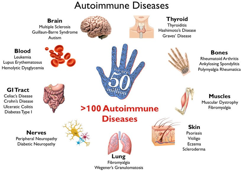 Autoimmune Disease – When Your Own Body Turns Against You Part 1